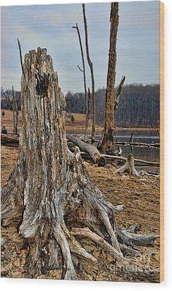 Dead Wood Wood Print by Paul Ward