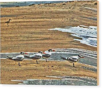Dee-tern-mined Wood Print by William Fields