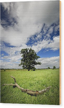 Wood Print featuring the photograph Deep Blue Wonder by John Chivers