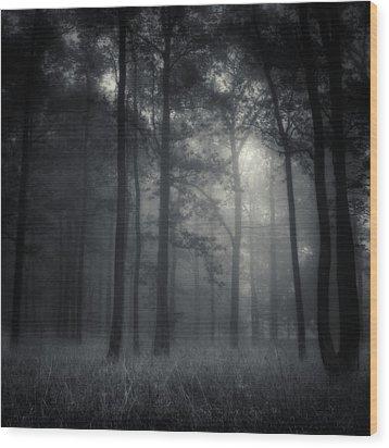 Deep Forest Wood Print by Jaromir Hron