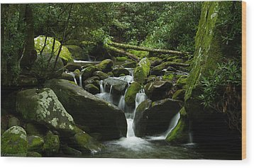 Deep In The Forest Lies A Waterfall   Wood Print by Glenn Lawrence