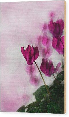Deep Pink Cyclamen Wood Print by Jacqi Elmslie