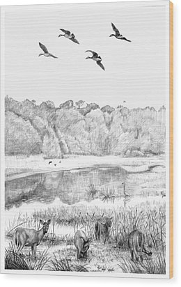 Deer And Geese - Lake Mattamuskeet Wood Print by Tim Treadwell