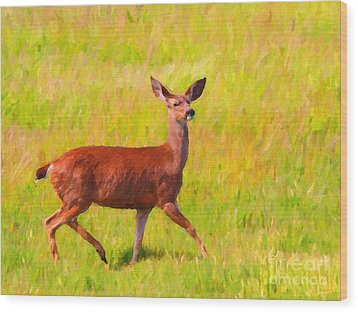 Deer In The Meadow Wood Print by Wingsdomain Art and Photography