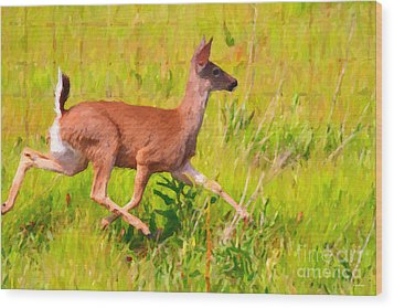 Deer Prancing In The Field Wood Print by Wingsdomain Art and Photography