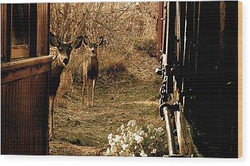 Deer Train Yard In Golden Wood Print by Travis Burns