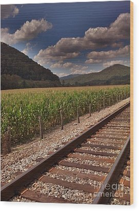 Wood Print featuring the photograph Del Rio Tennessee by Janice Spivey
