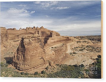 Delicate Arch Viewpoint - D004091 Wood Print by Daniel Dempster
