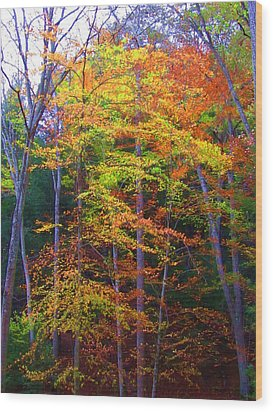 Delicate Colors Wood Print by Vijay Sharon Govender