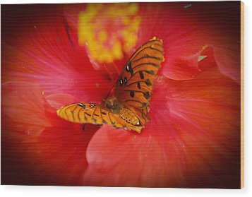 Delicate Visitor Wood Print
