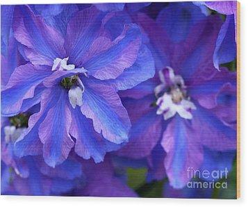 Delightful Delphinia Flowers Wood Print by Sabrina L Ryan