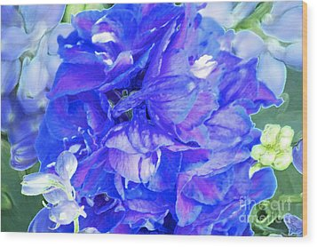 Delphinium Blue Wood Print by Gwyn Newcombe