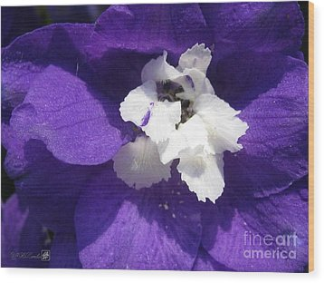 Wood Print featuring the photograph Delphinium Named Blue With White Bee by J McCombie