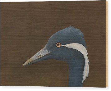 Demoiselle Crane Wood Print by Norm Holmberg