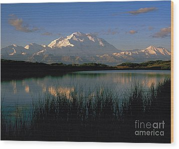 Wood Print featuring the photograph Denali by Doug Herr