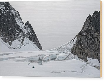 Wood Print featuring the photograph Denali Park Glacier by Gary Rose