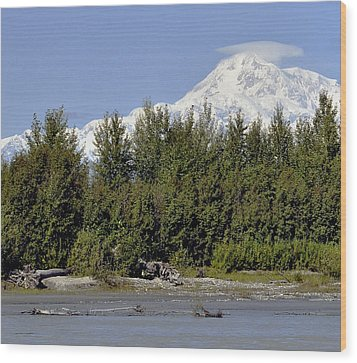 Denali View Wood Print by George Hawkins