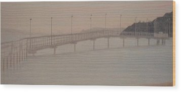 Des Moines Marina 1 Of 3 Wood Print