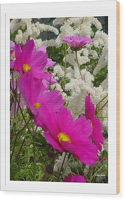 Wood Print featuring the photograph Descendingly Pink by Frank Wickham