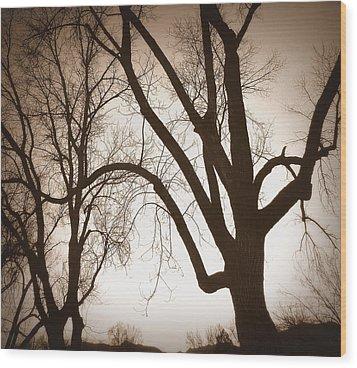 Desepiants Wood Print by Dan Stone