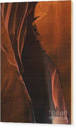 Desert Beam Wood Print by Mike  Dawson