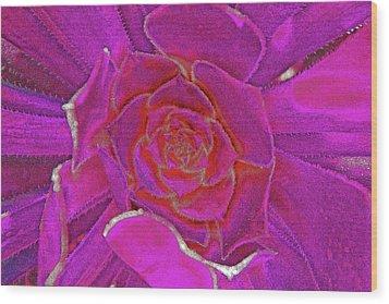 Desert Bloom Wood Print by James Mancini Heath