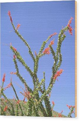 Desert Bloom Wood Print by