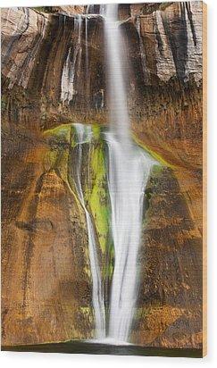 Desert Cascade  Wood Print by James Marvin Phelps