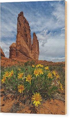 Desert Flowers Wood Print by Charlie Choc