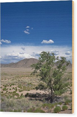Desert In New Mexico Wood Print