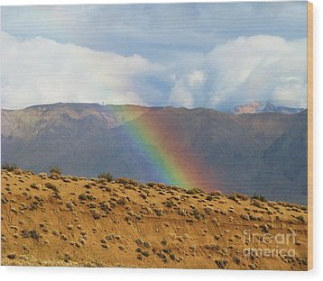 Desert Rainbow Wood Print by Michele Penner