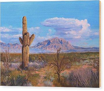 Desert Scene 4 Wood Print