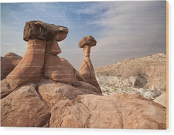 Wood Print featuring the photograph Desert Toadstool Hoodoos by Mike Irwin