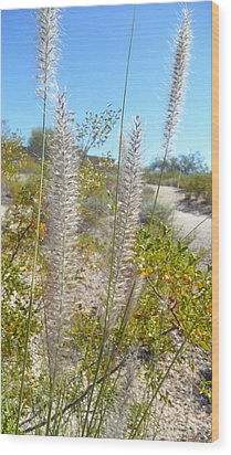 Wood Print featuring the photograph Desert Trail by Kume Bryant