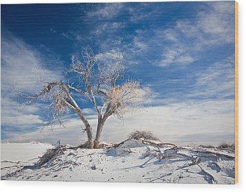 Desert Tree In White Sands Wood Print by Ralf Kaiser