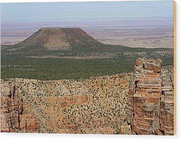 Desert Watch Tower View Wood Print by Julie Niemela