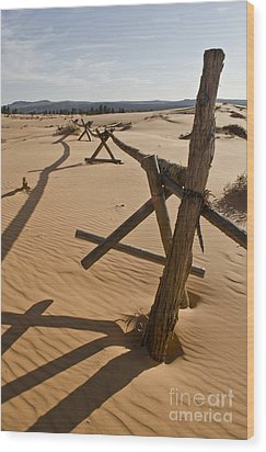 Desolate Wood Print by Heather Applegate