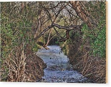 Desolation Creek Hdr Wood Print