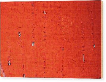 Desolation Row Wood Print by Shawn Hughes