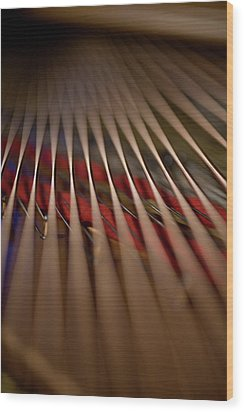 Detail Of Piano Strings Wood Print by Christopher Kontoes