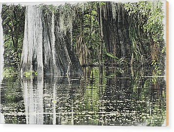 Details Of A Florida River Wood Print by Janie Johnson