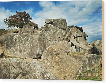 Devil's Den Formation 87 Wood Print by Paul W Faust -  Impressions of Light