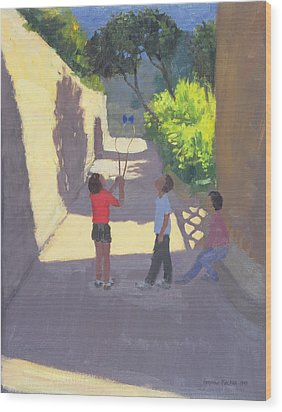 Diabolo France Wood Print by Andrew Macara