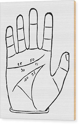 Diagram Used In Palmistry, 16th Century Wood Print by Middle Temple Library