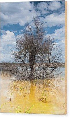 Die Standing Wood Print by Edgar Laureano