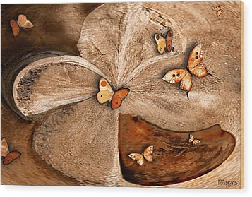 Discovery Wood Print by Paula Ayers