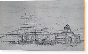Wood Print featuring the drawing Discovery by Sheep McTavish