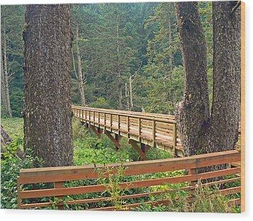 Discovery Trail Bridge Wood Print by Pamela Patch