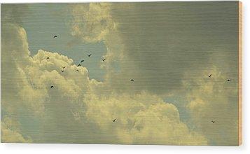 Distant Birds Wood Print by Naomi Berhane