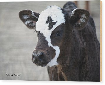 Wood Print featuring the photograph Do You Like My Bow by Roena King